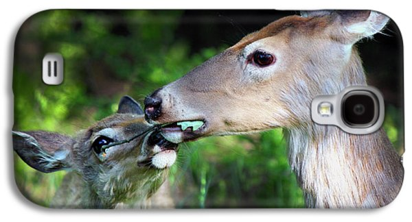 Mother Deer With Fawn Galaxy S4 Case by Codee Hart