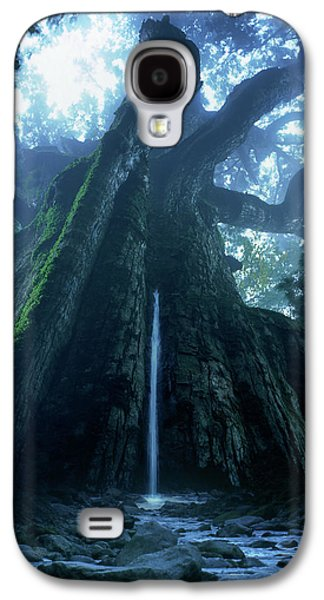 Mother Tree Galaxy S4 Case