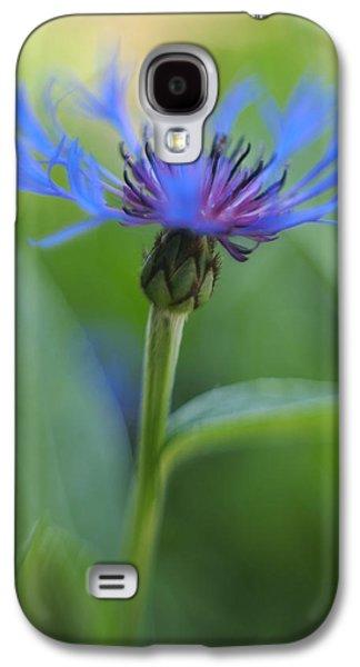 Mountain Bluet Flower Galaxy S4 Case by Don Zawadiwsky