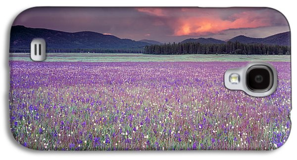 Mountain Meadow Purple Galaxy S4 Case by Leland D Howard
