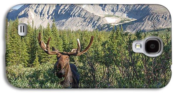 Mountain Moose Galaxy S4 Case