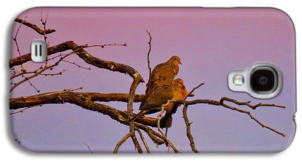 Mourning Doves Galaxy S4 Case