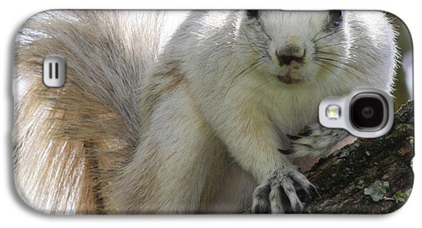 Mr. Inquisitive II Galaxy S4 Case by Betsy Knapp