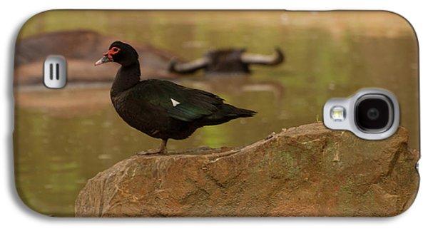 Muscovy Duck Galaxy S4 Case