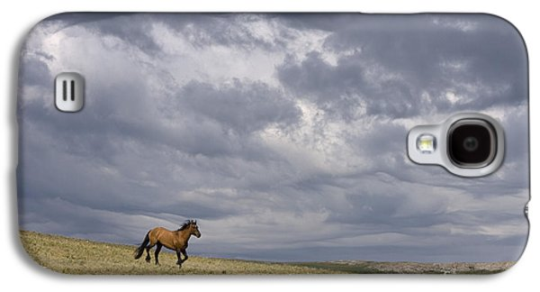 Mustang And Stormy Sky Galaxy S4 Case by Jean-Louis Klein & Marie-Luce Hubert