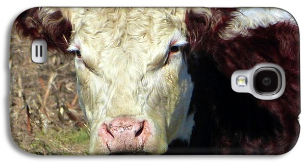 My Favorite Cow Galaxy S4 Case by Tina M Wenger