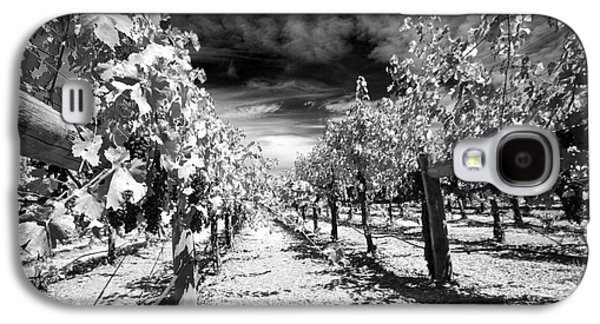 Napa Rows In Bw Galaxy S4 Case by Mary Haber
