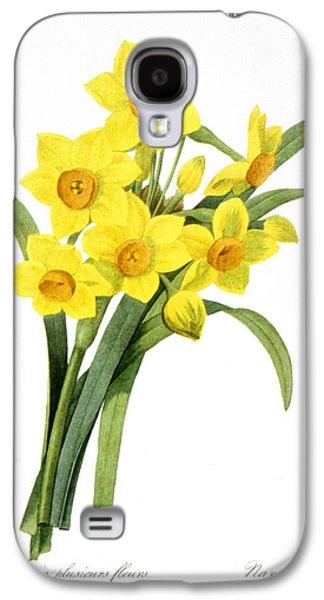 1833 Galaxy S4 Cases - Narcissus (n. Tazetta) Galaxy S4 Case by Granger