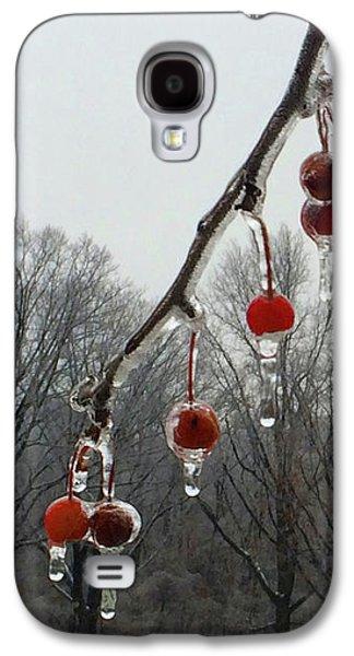 Natural Ornaments In A Frozen Landscape Galaxy S4 Case
