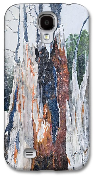 Snowy Day Paintings Galaxy S4 Cases - Nature Giveth and She Taketh Away         Galaxy S4 Case by Virginia McLaren
