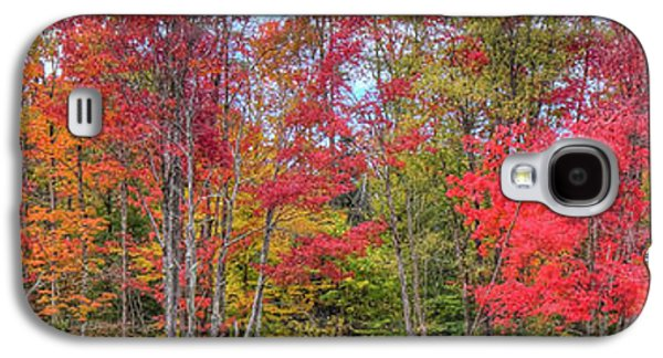 Galaxy S4 Case featuring the photograph Natures Autumn Palette by David Patterson