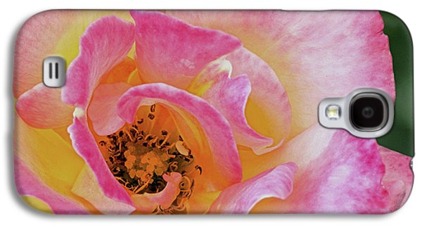 Nature's Beauty Galaxy S4 Case