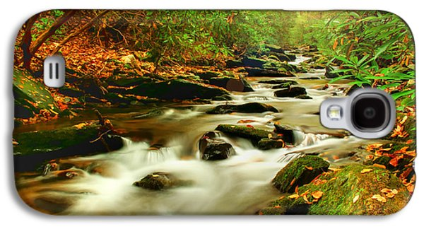 Natures Journey Galaxy S4 Case