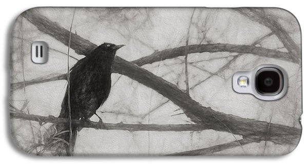 Nevermore Galaxy S4 Case by Melinda Wolverson