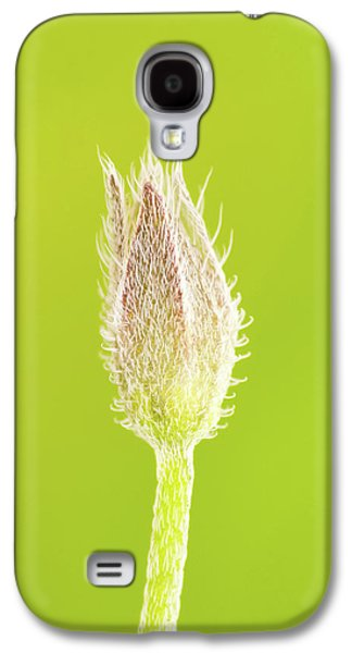 New Life Galaxy S4 Case by Wim Lanclus