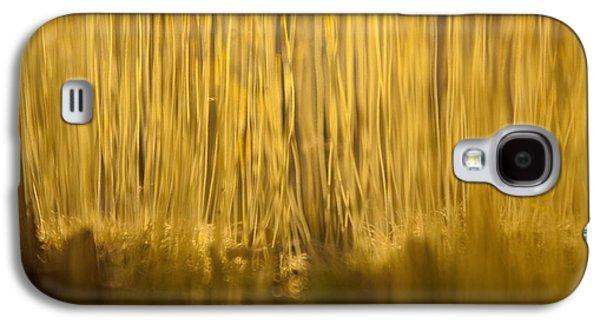 New Terra Firma Generating Galaxy S4 Case by Douglas Barnett
