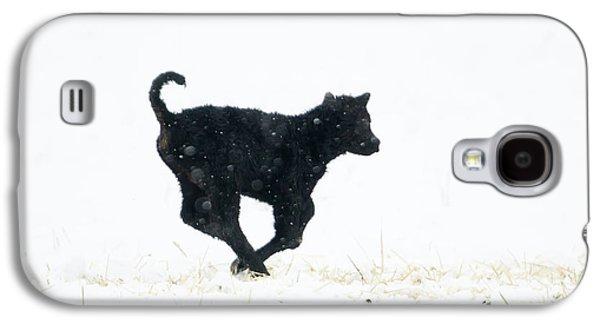 Newborn Snow Play Galaxy S4 Case