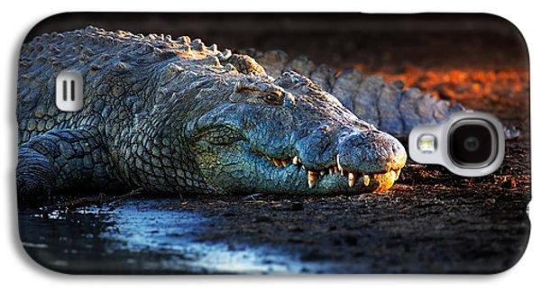 Nile Crocodile On Riverbank-1 Galaxy S4 Case by Johan Swanepoel