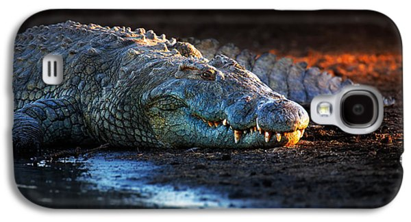 Nile Crocodile On Riverbank-1 Galaxy S4 Case