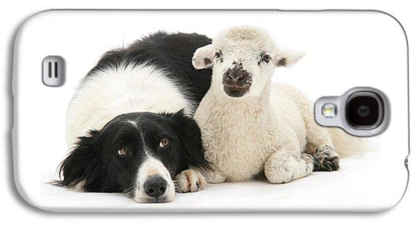 No Sheep Jokes, Please Galaxy S4 Case