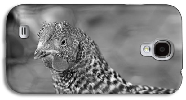 Galaxy S4 Case featuring the photograph Not Your Chicken Dinner by Lora Lee Chapman