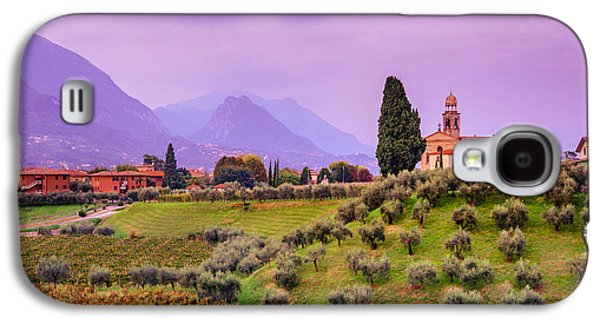 Olive Trees And Vineyard. Evening In Lombardy Galaxy S4 Case by Dmytro Korol