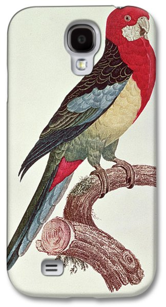 Omnicolored Parakeet Galaxy S4 Case by Jacques Barraband