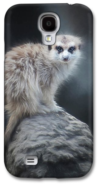 On Lookout Galaxy S4 Case by Anita Hubbard