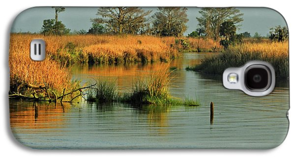 One Way In - One Way Out Galaxy S4 Case by Laura Ragland