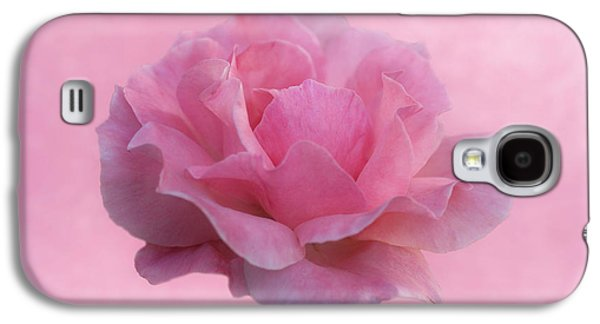 Indiana Flowers Galaxy S4 Cases - Only Pink Rose Galaxy S4 Case by Sandy Keeton