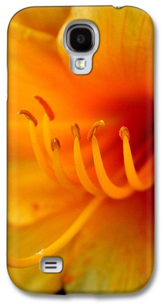 Orange Marmalade 2 Galaxy S4 Case