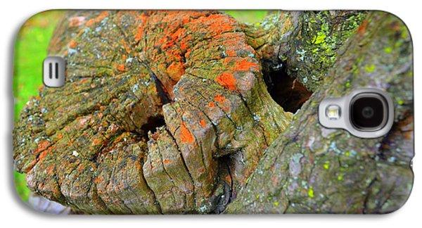 Orange Tree Stump Galaxy S4 Case