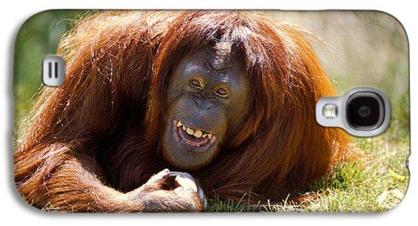 Orangutan In The Grass Galaxy S4 Case by Garry Gay