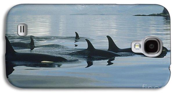 Orca Pod Johnstone Strait Canada Galaxy S4 Case