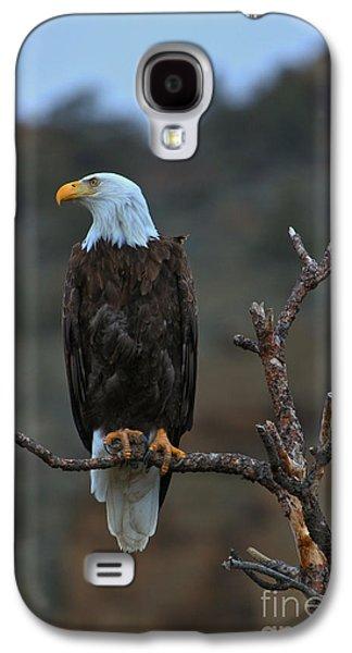 Oregon Bald Eagle Galaxy S4 Case