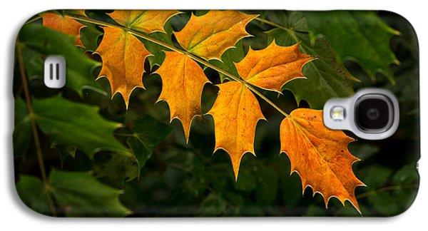 Oregon Grape Autumn Galaxy S4 Case