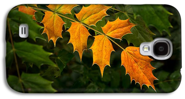 Oregon Grape Autumn Galaxy S4 Case