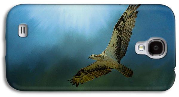 Osprey In The Evening Light Galaxy S4 Case by Jai Johnson