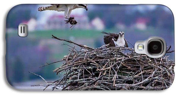 Osprey Nest Building Galaxy S4 Case