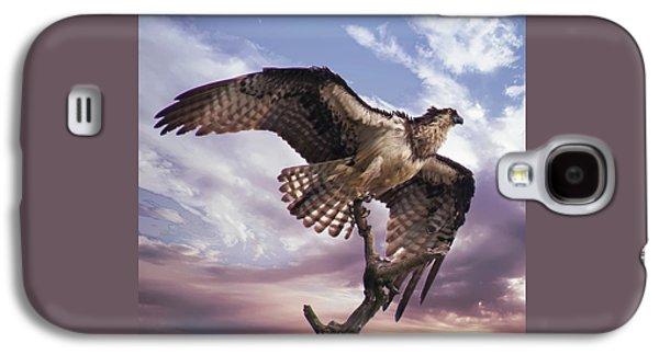 Osprey Wing Galaxy S4 Case
