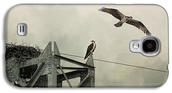 Ospreys At Pickwick Galaxy S4 Case by Jai Johnson