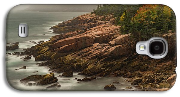 Otter Cliffs Galaxy S4 Case