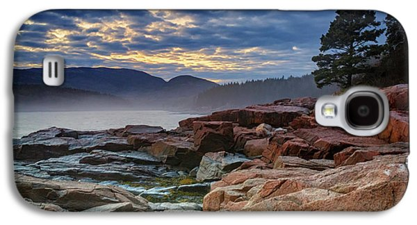 Otter Cove In The Mist Galaxy S4 Case