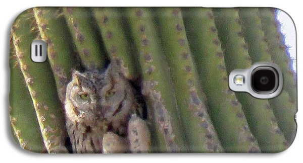 Owl In Cactus Burrow Galaxy S4 Case