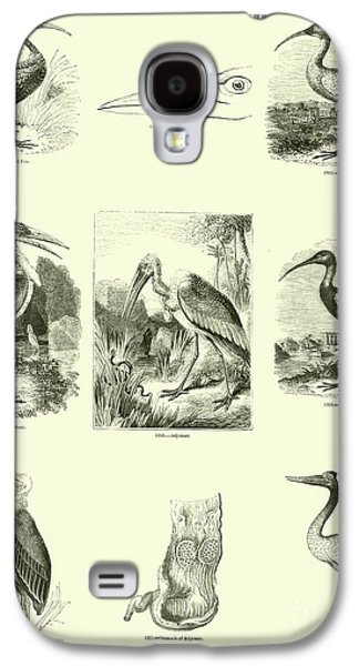 Page From The Pictorial Museum Of Animated Nature  Galaxy S4 Case by English School