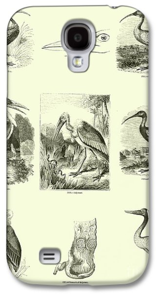Page From The Pictorial Museum Of Animated Nature  Galaxy S4 Case