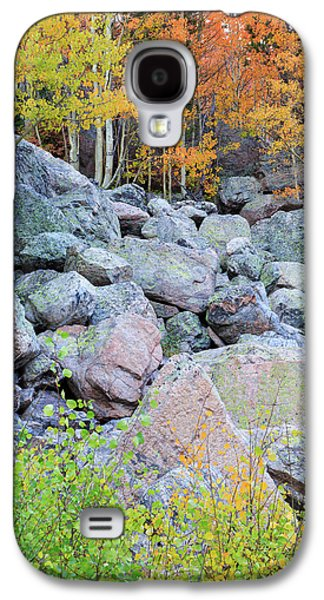 Galaxy S4 Case featuring the photograph Painted Rocks by David Chandler