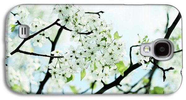 Galaxy S4 Case featuring the photograph Pale Pear Blossom by Jessica Jenney