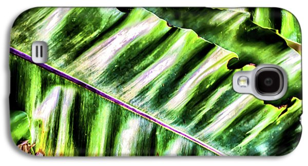 Palm Fronds Up Close Galaxy S4 Case