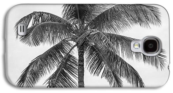 Palm Tree Galaxy S4 Case by Elena Elisseeva